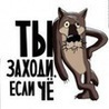 esli_ch-zakhodi
